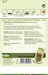 Pflücksalat Amerikanischer Brauner | Pflücksalatsamen von N.L. Chrestensen