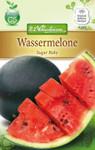 Wassermelone Sugar Baby | Wassermelonensamen von N.L. Chrestensen
