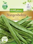 Stangenbohne Limka | Stangenbohnensamen von N.L. Chrestensen
