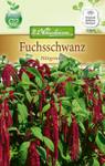 Fuchsschwanz Hängender | Fuchsschwanzsamen von N.L. Chrestensen