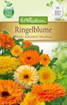 Ringelblume Pacific Schönheit | Ringelblumensamen von N.L. Chrestensen