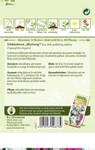 Schleierkraut Mischung | Schleierkrautsamen von N.L. Chrestensen