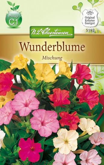 Wunderblume Mix | Wunderblumesamen von N.L. Chrestensen