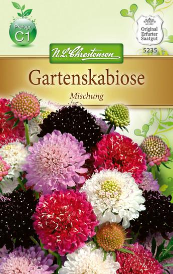 Gartenscabiose Mischung | Gartenscabiosensamen von N.L. Chrestensen
