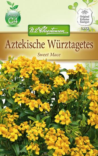 Aztekische Würztagetes   Würztagetessamen von N.L. Chrestensen