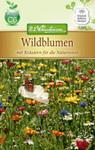 Wildblumen mit Kräutern | Wildblumensamen von N.L. Chrestensen