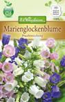Marienglockenblume | Marienglockenblumensamen von N.L. Chrestensen