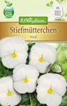 Stiefmütterchen Weiß | Stiefmütterchensamen von N.L. Chrestensen