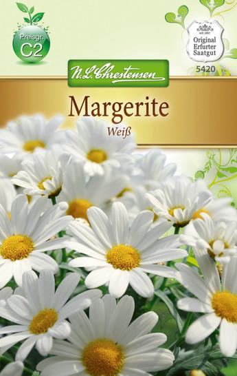 Margerite Weiß | Margeritensamen von N.L. Chrestensen