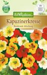 Kapuzinerkresse Rankend | Kapuzinerkressesamen von N.L. Chrestensen