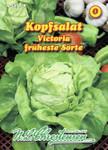 Kopfsalat Viktoria | Kopfsalatsamen von N.L. Chrestensen