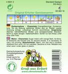 Zuckermelone Charentais | Zuckermelonensamen von N.L. Chrestensen
