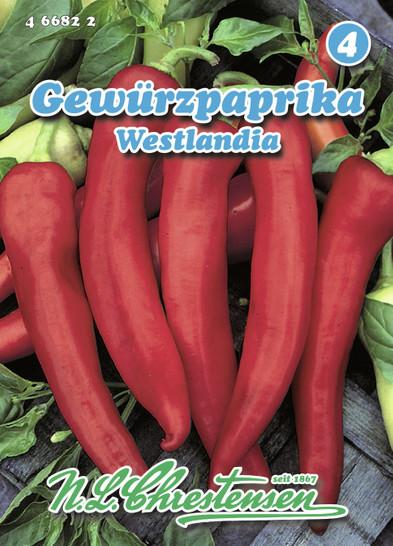 Gemüsepaprika Westlandia | Paprikasamen von N.L. Chrestensen