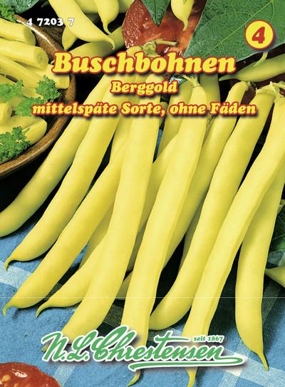 Buschbohne Berggold | Buschbohnensamen von N.L. Chrestensen