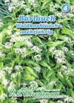 Bärlauch Waldknoblauch | Bärlauchsamen von N.L. Chrestensen