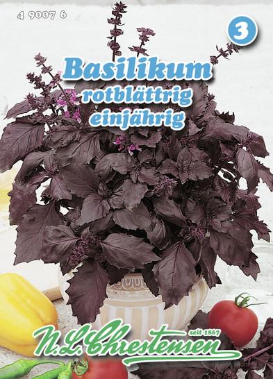 Basilikum rotblättrig   Basilikumsamen von N.L. Chrestensen