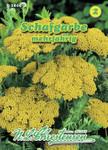 Schafgarbe | Schafgarbensamen von N.L. Chrestensen