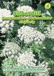 Silberdill Brautschleier Knorpelmöhre | Silberdillsamen von N.L. Chrestensen
