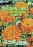Ringelblume Orangestrahlen | Ringelblumensamen von N.L. Chrestensen