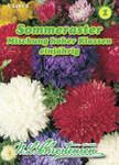 Sommer-Aster Mischung hoher Klassen | Sommerasternsamen von N.L. Chrestensen