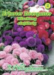 Erfurter Zwergaster Mischung | Zwergasternsamen von N.L. Chrestensen