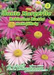 Bunte Margerite Robinsons Riesen | Margeritensamen von N.L. Chrestensen