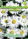 Margerite Riesenblumig | Margeritensamen von N.L. Chrestensen