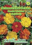Schmuckkörbchen Bunte Lichter | Cosmeasamen von N.L. Chrestensen