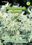 Wolfsmilch | Wolfsmilchsamen von N.L. Chrestensen