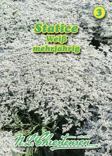 Statice | Staticesamen von N.L. Chrestensen