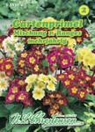 Gartenprimel Mischung 1. Ranges | Gartenprimelsamen von N.L. Chrestensen