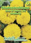 [Streichung '20] Studentenblume Inca II Yellow F1   Studentenblumensamen von N.L. Chrestensen