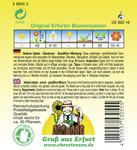 Eisenkraut Grandiflora Mischung   Eisenkrautsamen von N.L. Chrestensen