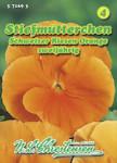Stiefmütterchen Schweizer Riesen Orange   Stiefmütterchensamen von N.L. Chrestensen