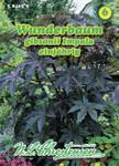 Wunderbaum Impala | Wunderbaumsamen von N.L. Chrestensen