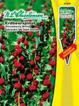 Erdbeerspinat | Erdbeerspinatsamen von N.L. Chrestensen