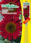 Sonnenblume Chocolat   Sonnenblumensamen von N.L. Chrestensen