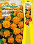 Studentenblume Orange Boy | Studentenblumensamen von N.L. Chrestensen