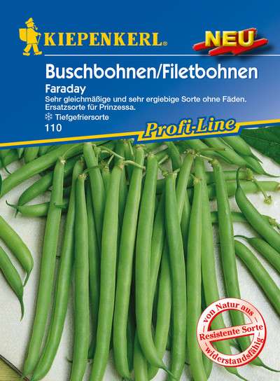 Buschbohne/Filetbohne Faraday | Buschbohnensamen von Kiepenkerl