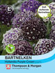 Bartnelken Purple Crown | Bartnelkensamen von Thompson & Morgan