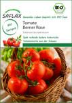 Tomate Berner Rose | Bio-Tomatensamen von Saflax