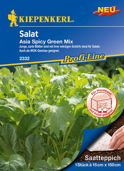 Salat Asia Spicy Green Mix   Saatteppich von Kiepenkerl