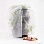 Paul Potato Starter Frostschutzhaube (Schlauchform) von Gusta Garden
