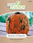 Halloweenkürbis Bunch O'Warts | Halloweenkürbissamen von Jansen Zaden