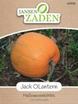 Halloweenkürbis Jack OLantern | Halloweenkürbissamen von Jansen Zaden