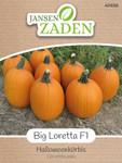 Halloweenkürbis Big Loretta F1 | Halloweenkürbissamen von Jansen Zaden