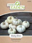 Speisekürbis Baby Boo | Speisekürbissamen von Jansen Zaden