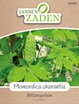 Bittergurke Momordica charantia | Bittergurkensamen von Jansen Zaden