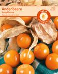 Andenbeere Inkapflaume | Andenbeerensamen von Carl Pabst