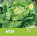 Salat Matilda | Kopfsalatsamen von Carl Pabst